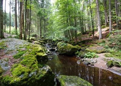 Steinklamm bei Spiegelau Bayerischer Wald