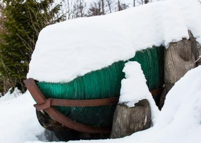 Die Glasarche am Fuße des Lusen im Winter