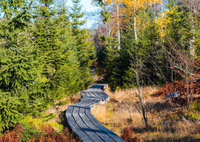 Herbstwandern im Bayerischen Wald