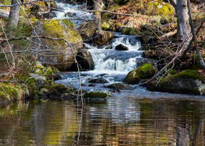 Wasser im Bayerischen Wald